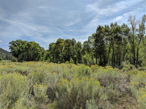Beautiful Riverfront Land Dolores : Dolores : Montezuma County : Colorado