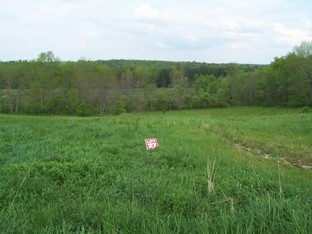 Hunting Land Bordering State Forest : Plymouth : Chenango County : New York