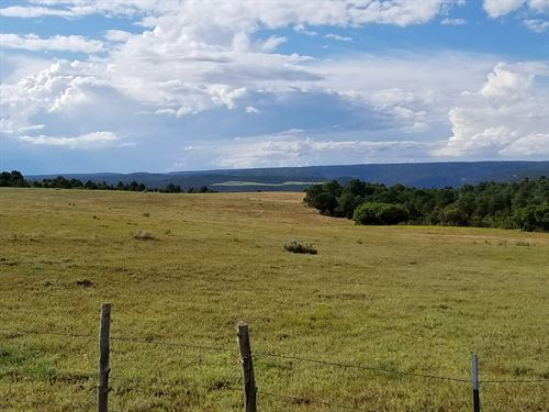 Colorado Land Dolores Co, Homesite : Dolores : Montezuma County : Colorado