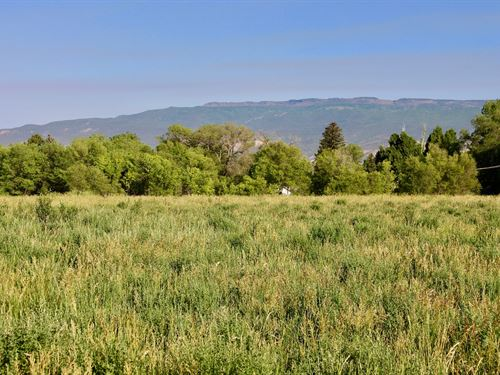 8.65 Irrigated Acreage Paid Water : Eckert : Delta County : Colorado