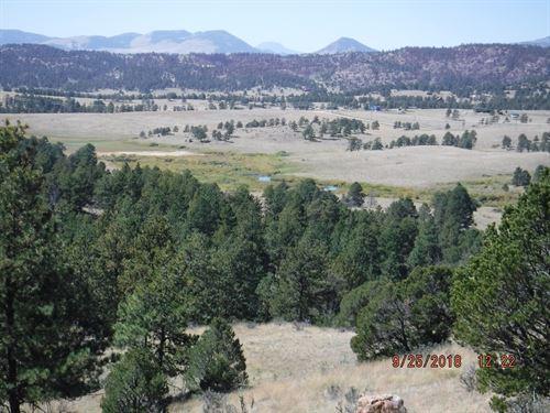 Colorado Acreage Lake Stream Access : Florissant : Teller County : Colorado