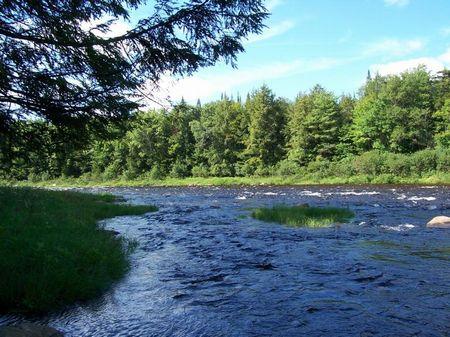 138 Acres Creek Frontage Adirondack : Ohio : Herkimer County : New York