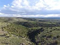 Colorado Mountain Land Grand : Glade Park : Mesa County : Colorado