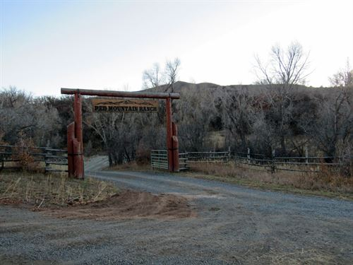Colorado Mountain Cattle Ranch : Collbran : Mesa County : Colorado