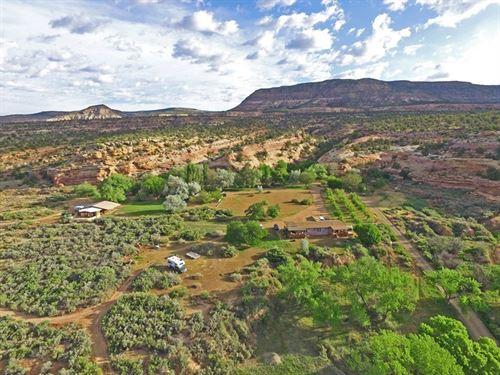 Successful Bed & Breakfast SW : Cortez : Montezuma County : Colorado