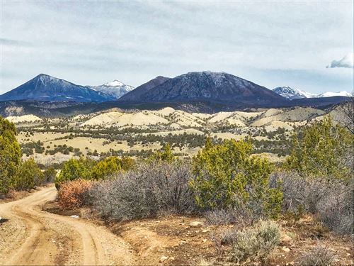 Mountain Hunting Property Western : Crawford : Montrose County : Colorado