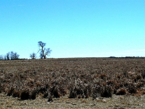 36 Acres Dryland in Yuma County : Joes : Yuma County : Colorado