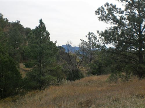 35 Acres Seasonal Stream Trinidad : Trinidad : Las Animas County : Colorado