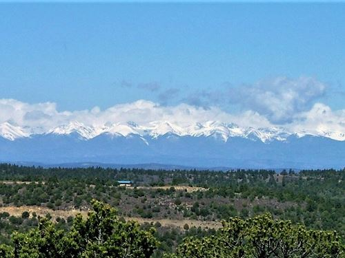 35 Acre Mountain Lot Trinidad : Trinidad : Las Animas County : Colorado