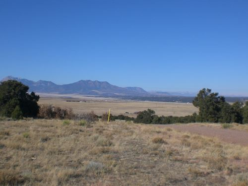 39 Acres River Ridge Ranch : Walsenburg : Huerfano County : Colorado