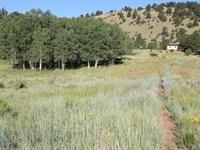 Land in Westcliffe Colorado : Westcliffe : Custer County : Colorado