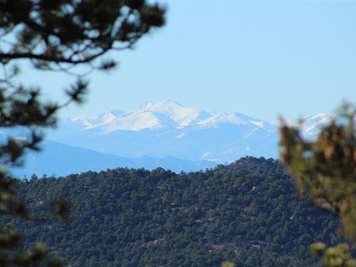 35,25 Acres Dilley Ranch Westcliffe : Westcliffe : Custer County : Colorado