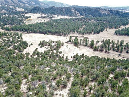 116 Acres in Westcliffe Colorado : Westcliffe : Custer County : Colorado