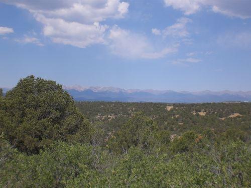10 Acre Mountain Property West : Weston : Las Animas County : Colorado