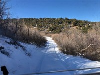 40 Acre CO Mountain, Recreational : Montrose : Ouray County : Colorado