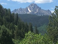 Close Views Mt, Sneffels, 40 Acre : Ridgway : Ouray County : Colorado