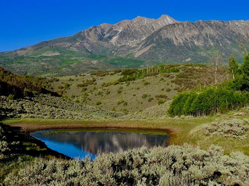 Colorado Gmu 521 Big Game Hunting : Somerset : Gunnison County : Colorado