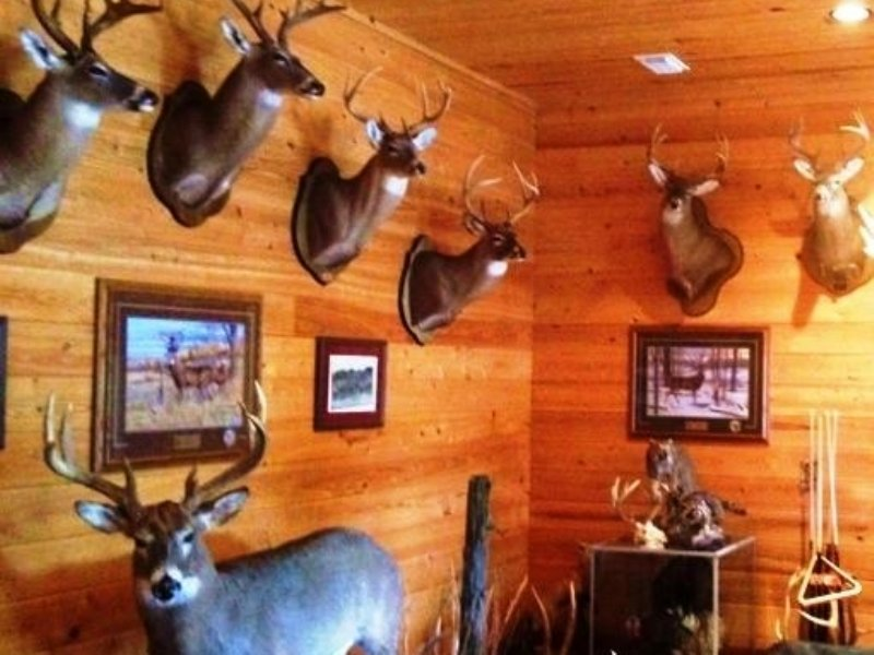 Whispering Pines Lodge : Fayette : Fayette County : Alabama