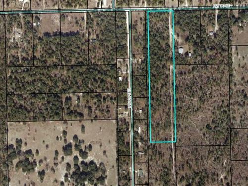 10 Acres, Vacant Land, Gilchrist : Bell : Gilchrist County : Florida
