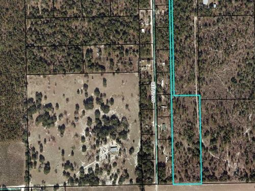 Acreage, 18 Acres, Gilchrist : Bell : Gilchrist County : Florida