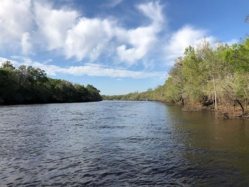 Riverfront Property Suwannee River : Bell : Gilchrist County : Florida