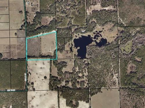 Nice Acreage North Gilchrist County : Bell : Gilchrist County : Florida