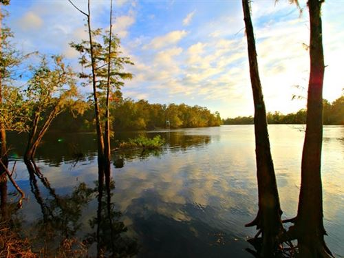 120.31 Acres in Branford, Florida : Branford : Gilchrist County : Florida