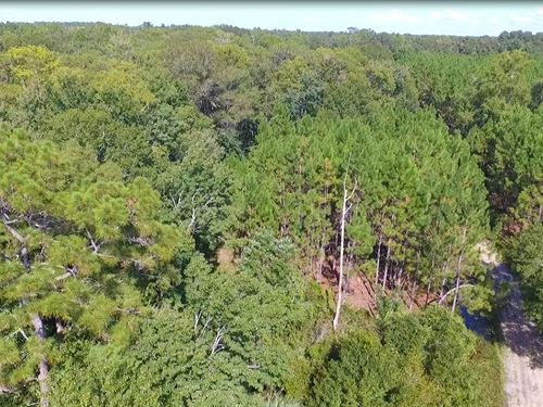 Investor Alert-2015 Acres : Chiefland : Levy County : Florida