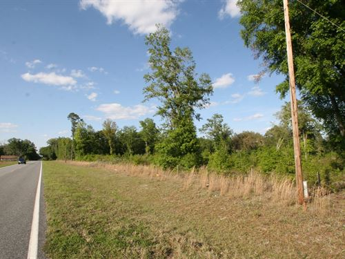 73.52 Acres In North Florida : Lake City : Columbia County : Florida
