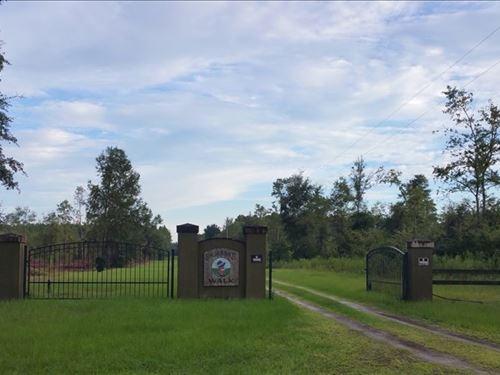 10 Acres Live Oak, FL Ready Your : Live Oak : Suwannee County : Florida