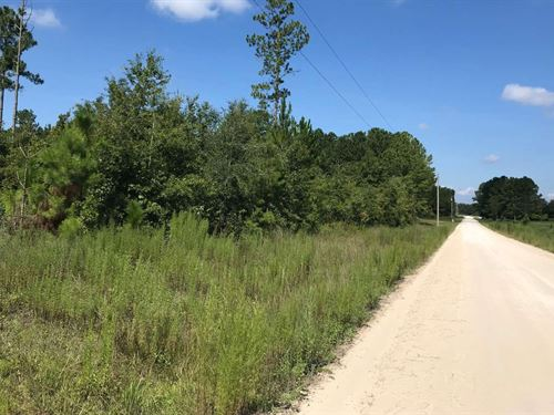 5 Acre Corner Lot in Live Oak, FL : Live Oak : Suwannee County : Florida
