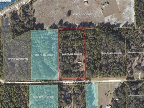Private, 5 Acres Nestled Beautiful : Old Town : Dixie County : Florida