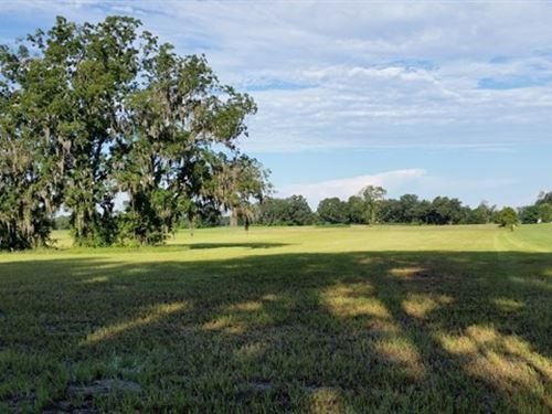 10.26 Acres Pasture Land Levy : Trenton : Gilchrist County : Florida