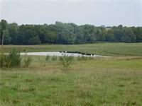 158 Acres Auction, Tillable Acres : Horton : Jackson County : Kansas