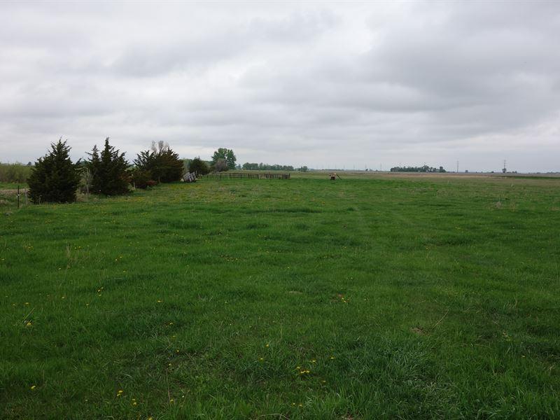 Deuel County Grassland : Revillo : Deuel County : South Dakota
