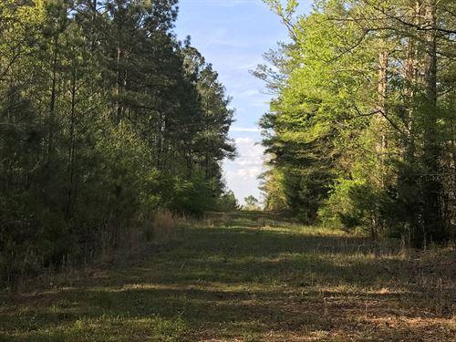 52 Acres, Oktibbeha County, MS : Starkville : Oktibbeha County : Mississippi