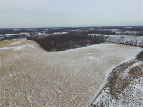 Delano Mn, Online Auction : Delano : Wright County : Minnesota
