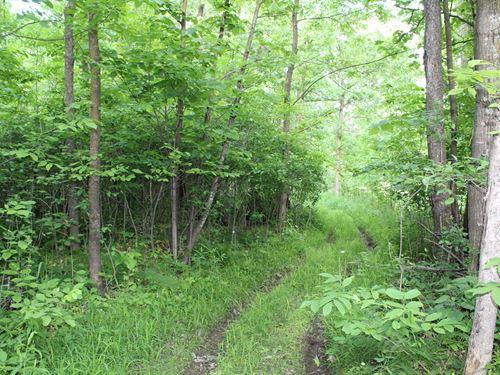 Hunters Paradise Benton County : Foley : Benton County : Minnesota