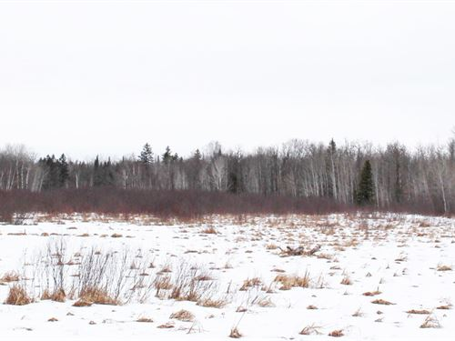 120 Acres McGregor, Aitkn Co : McGregor : Aitkin County : Minnesota