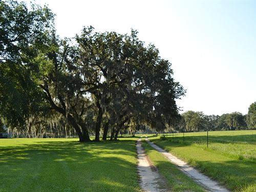 River Bend Ranch : Live Oak : Suwannee County : Florida
