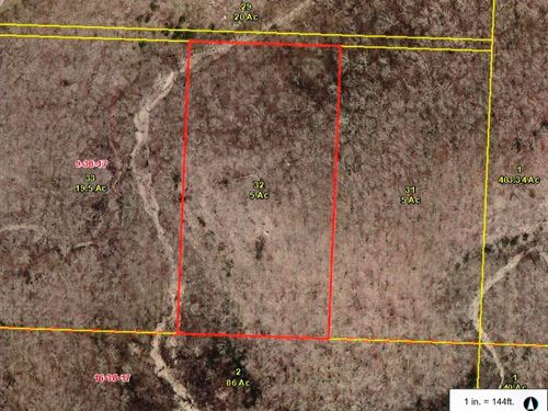 5 Wooded Acres : Camdenton : Camden County : Missouri