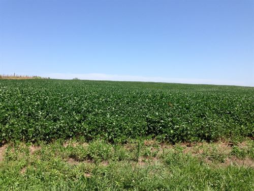 Nw MO High Producing Farm For Sale : Cameron : Caldwell County : Missouri