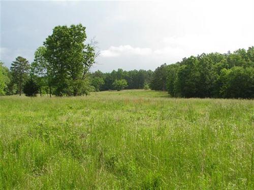 Land Missouri National Forest, 40 : Birch Tree : Shannon County : Missouri