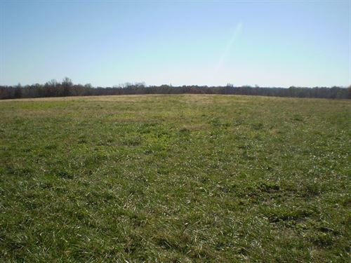 Hunting Land, Tillable Pasture : Blairstown : Johnson County : Missouri