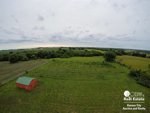 Vineyard Acreage Centerview : Centerview : Johnson County : Missouri