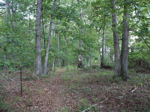 Wayne County Missouri Land 317 : Clubb : Wayne County : Missouri