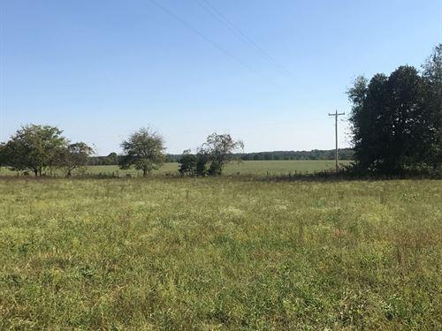 Land, Farm, Investment : Hartville : Wright County : Missouri