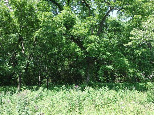 Land Southern Missouri Hartville : Hartville : Wright County : Missouri