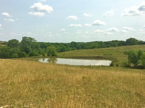 80 Acre Farm in Northern Missouri : Hatfield : Harrison County : Missouri