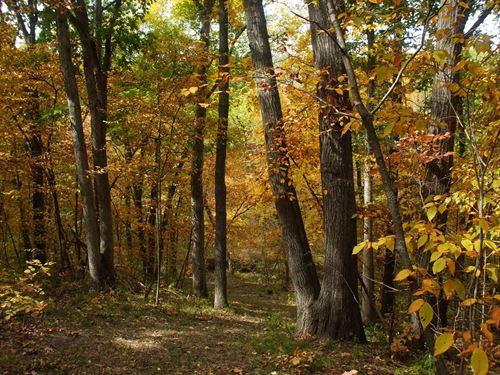 Hunting Land in Sullivan County : Milan : Sullivan County : Missouri